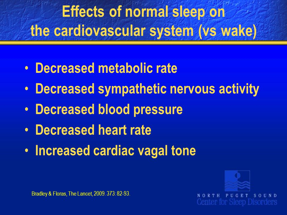 Effects of normal sleep on the cardiovascular system (vs wake)