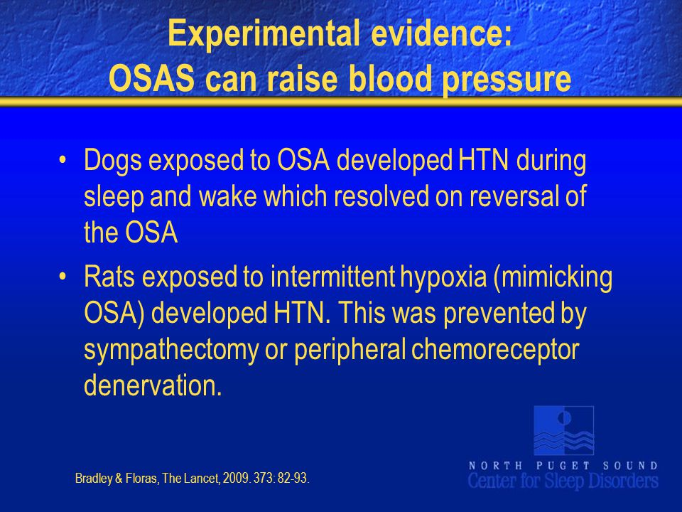 Experimental evidence: OSAS can raise blood pressure