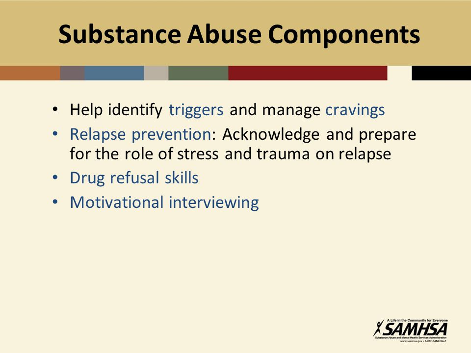 Substance Abuse Components