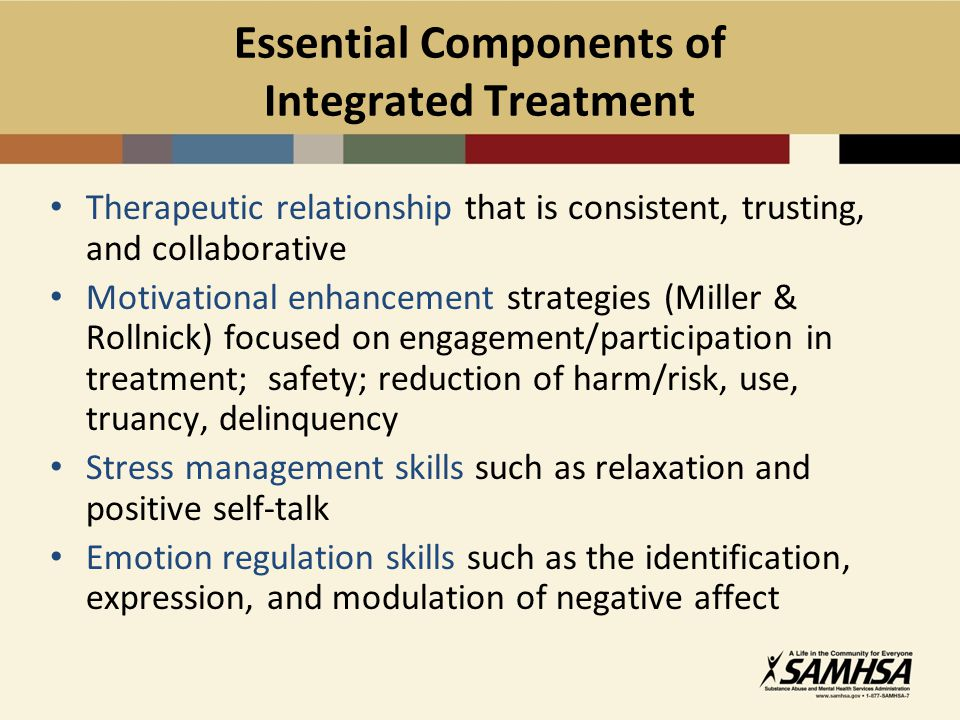 Essential Components of Integrated Treatment
