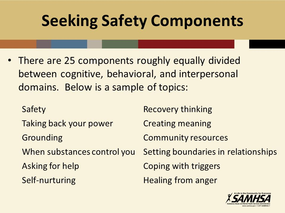 Seeking Safety Components