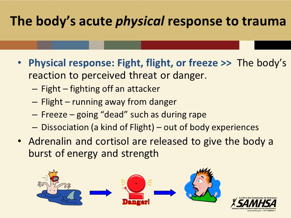 The body's acute physical response to trauma