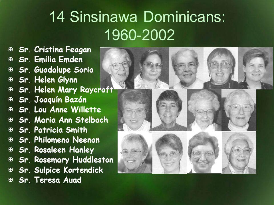 14 Sinsinawa Dominicans: 1960-2002