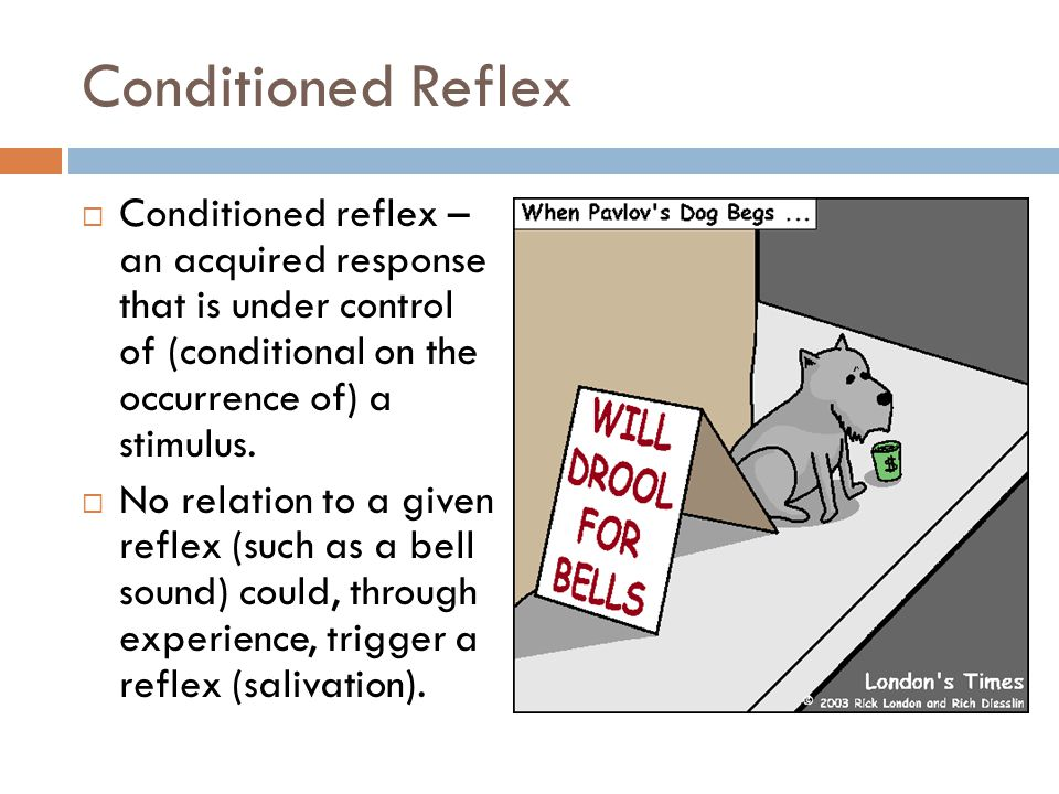 Conditioned Reflex Conditioned reflex – an acquired response that is under control of (conditional on the occurrence of) a stimulus.