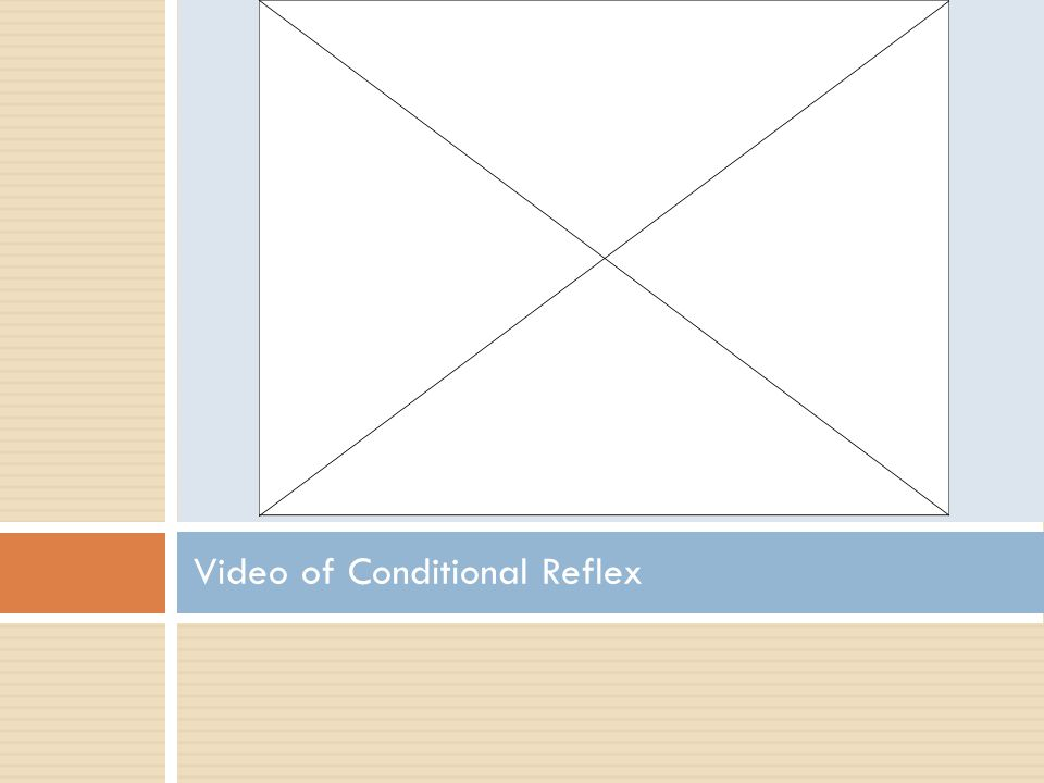 Video of Conditional Reflex