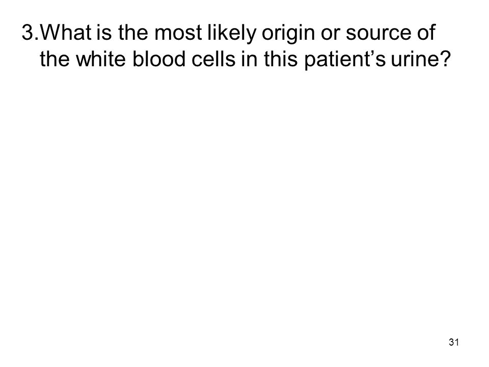 3. What is the most likely origin or source of the white blood cells in this patient's urine