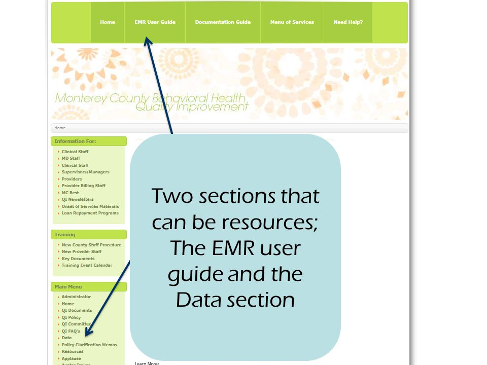 Two sections that can be resources; The EMR user guide and the Data section