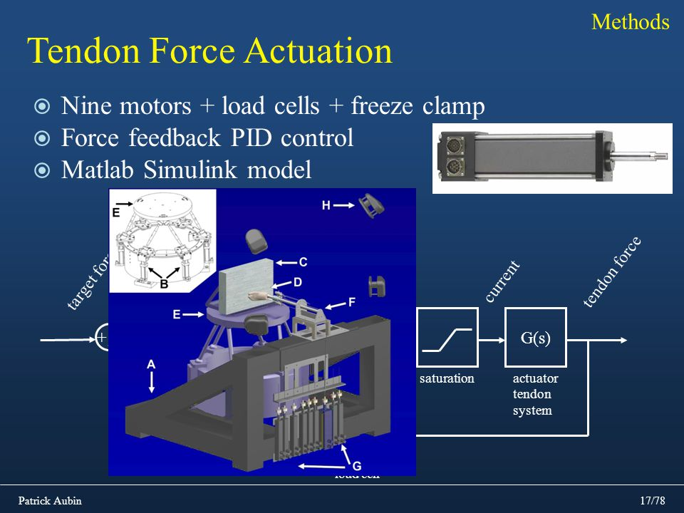 Tendon Force Actuation