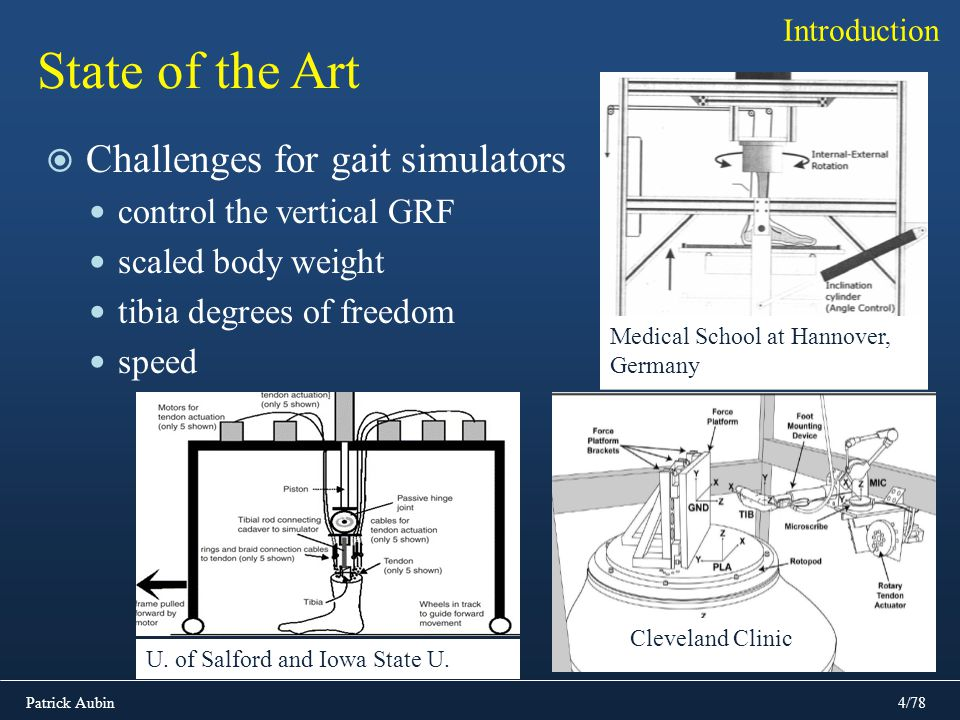 State of the Art Challenges for gait simulators