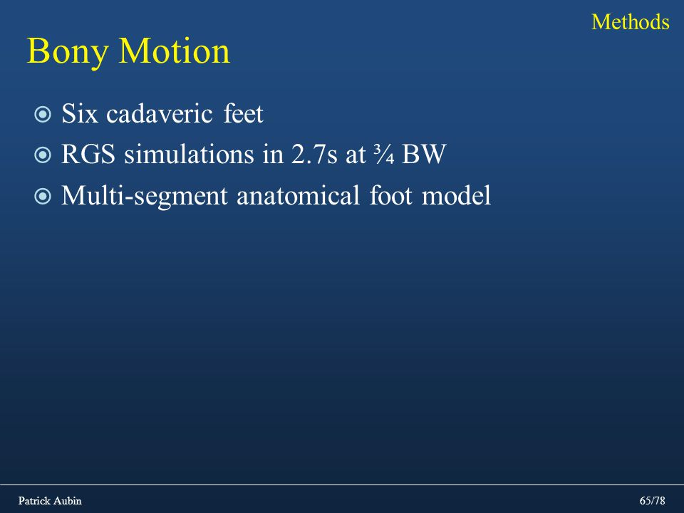 Bony Motion Six cadaveric feet RGS simulations in 2.7s at ¾ BW