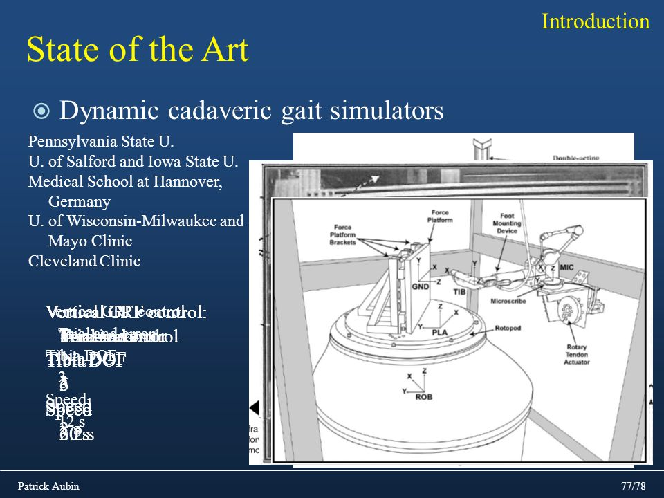 State of the Art Dynamic cadaveric gait simulators Introduction