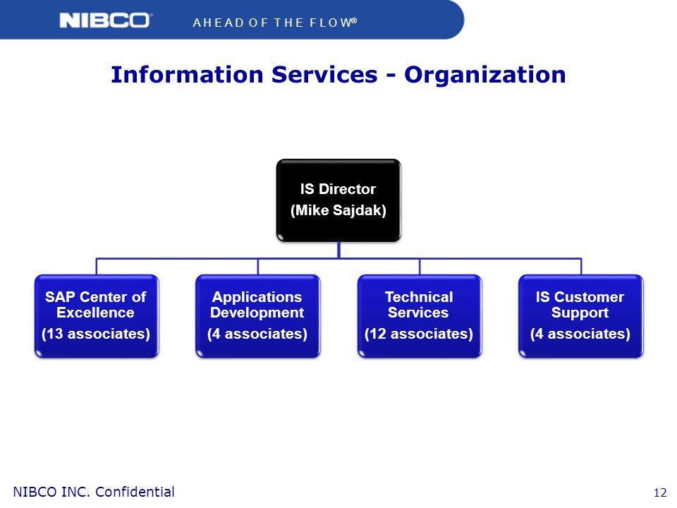 Information Services - Organization