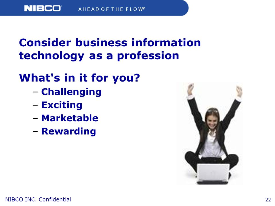 Consider business information technology as a profession