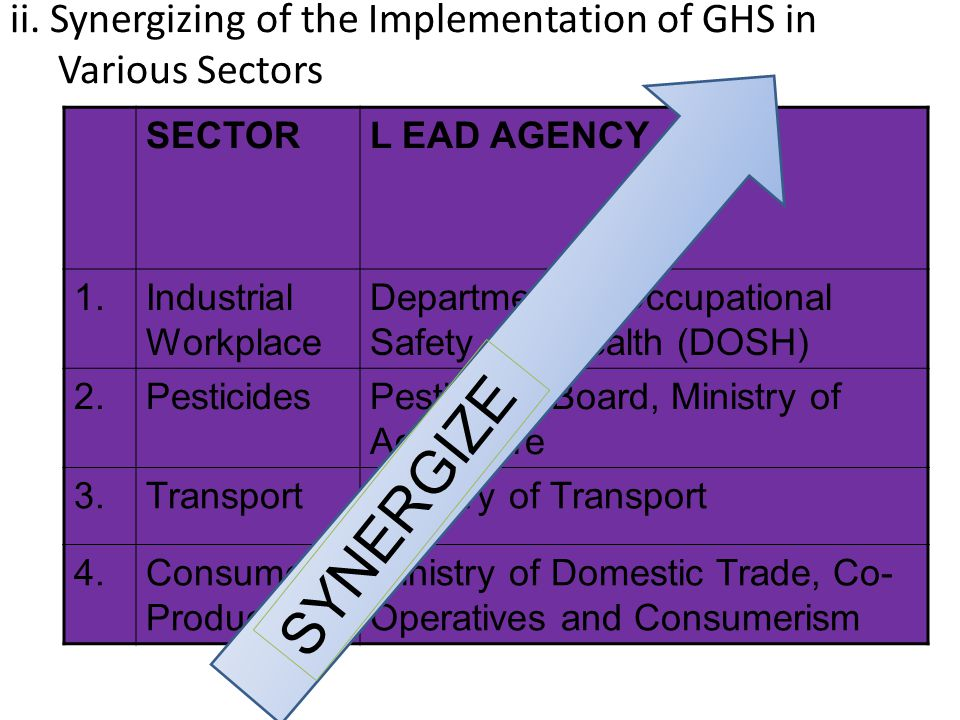 ii. Synergizing of the Implementation of GHS in Various Sectors