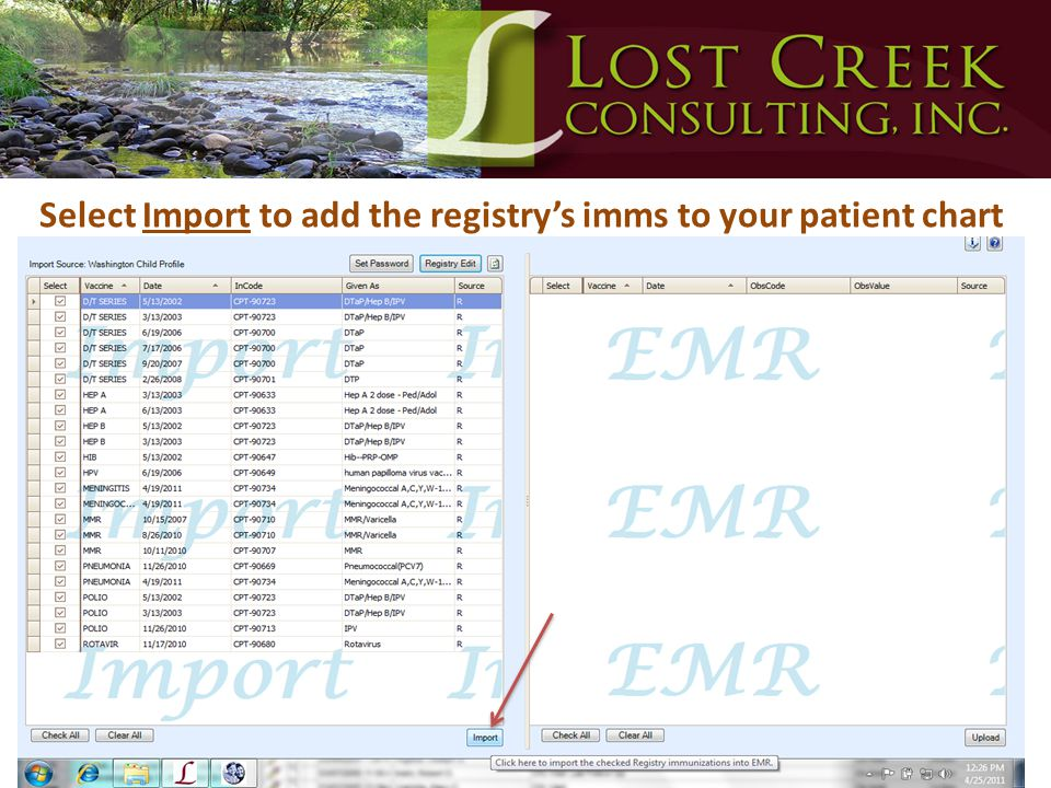 Select Import to add the registry's imms to your patient chart