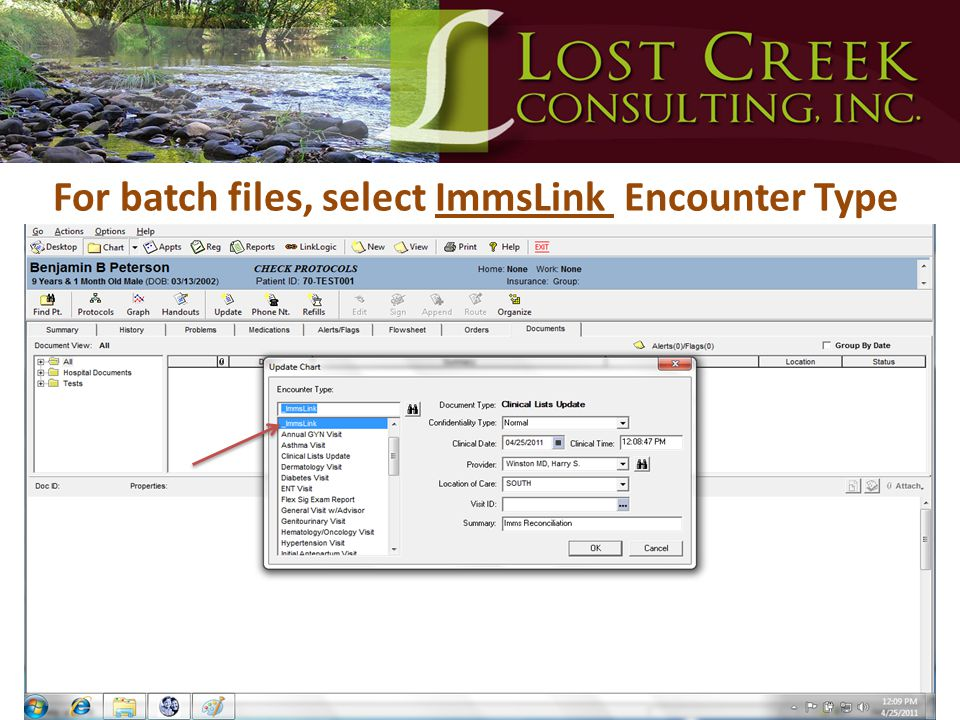 For batch files, select ImmsLink Encounter Type