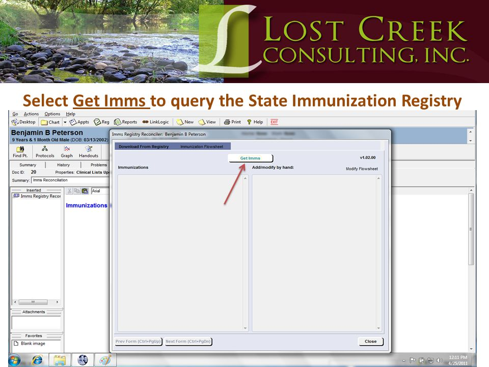 Select Get Imms to query the State Immunization Registry