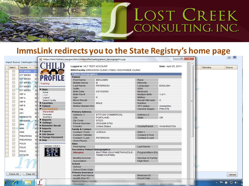 ImmsLink redirects you to the State Registry's home page