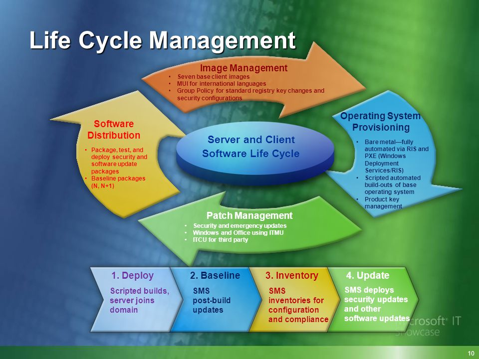 Life Cycle Management Server and Client Software Life Cycle