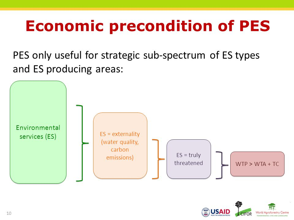 Economic precondition of PES