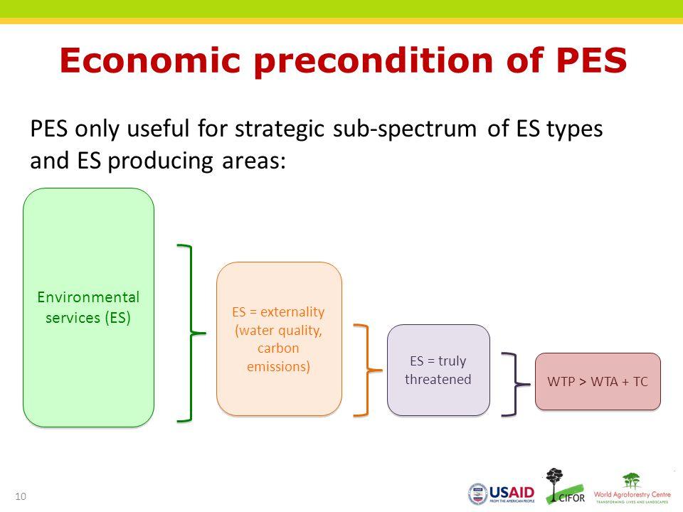 Economic precondition of PES