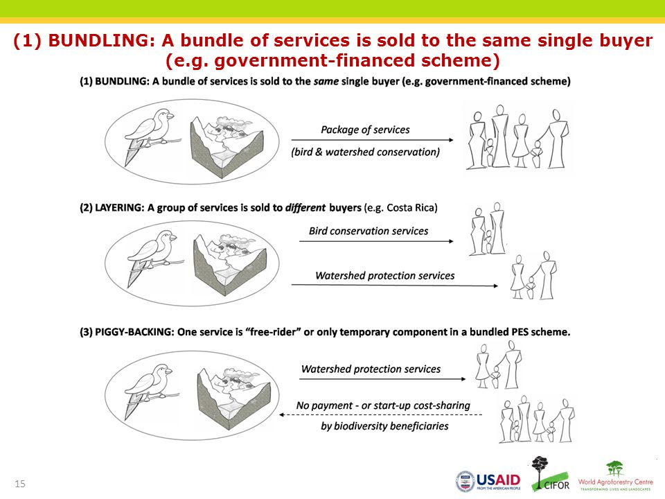 (1) BUNDLING: A bundle of services is sold to the same single buyer (e