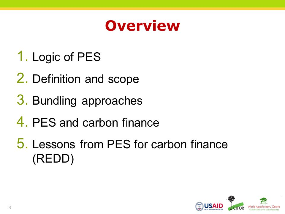 Overview Logic of PES Definition and scope Bundling approaches