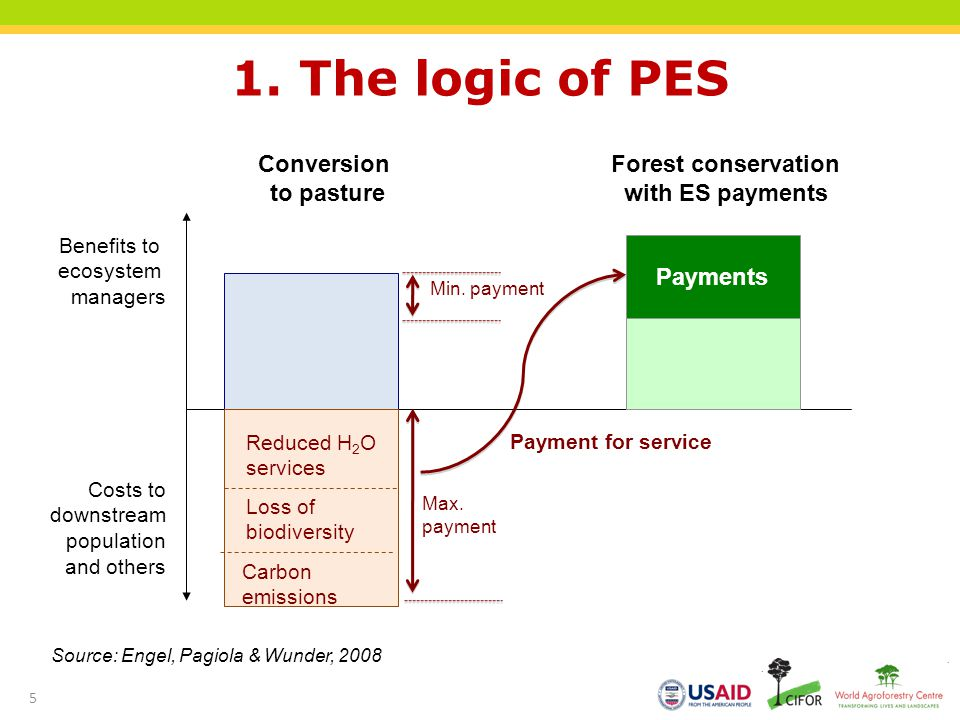 Forest conservation with ES payments