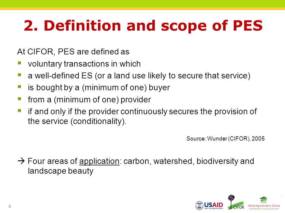 2. Definition and scope of PES