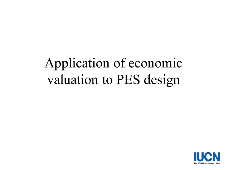 Application of economic valuation to PES design