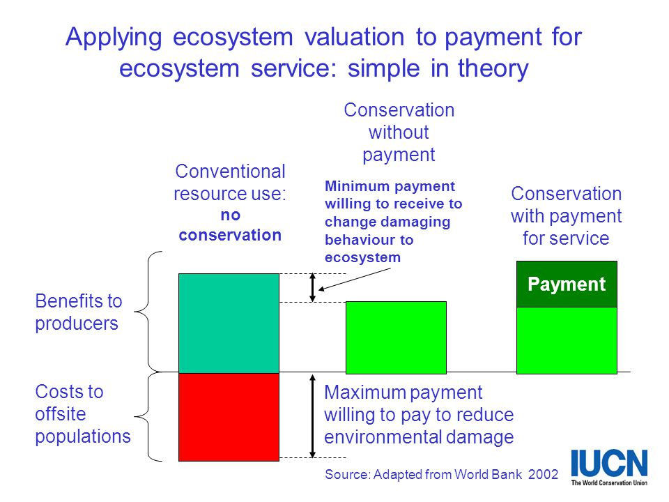 Applying ecosystem valuation to payment for ecosystem service: simple in theory