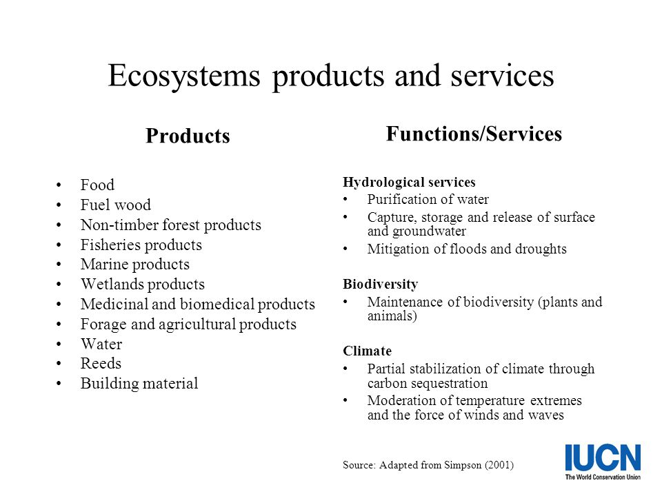 Ecosystems products and services