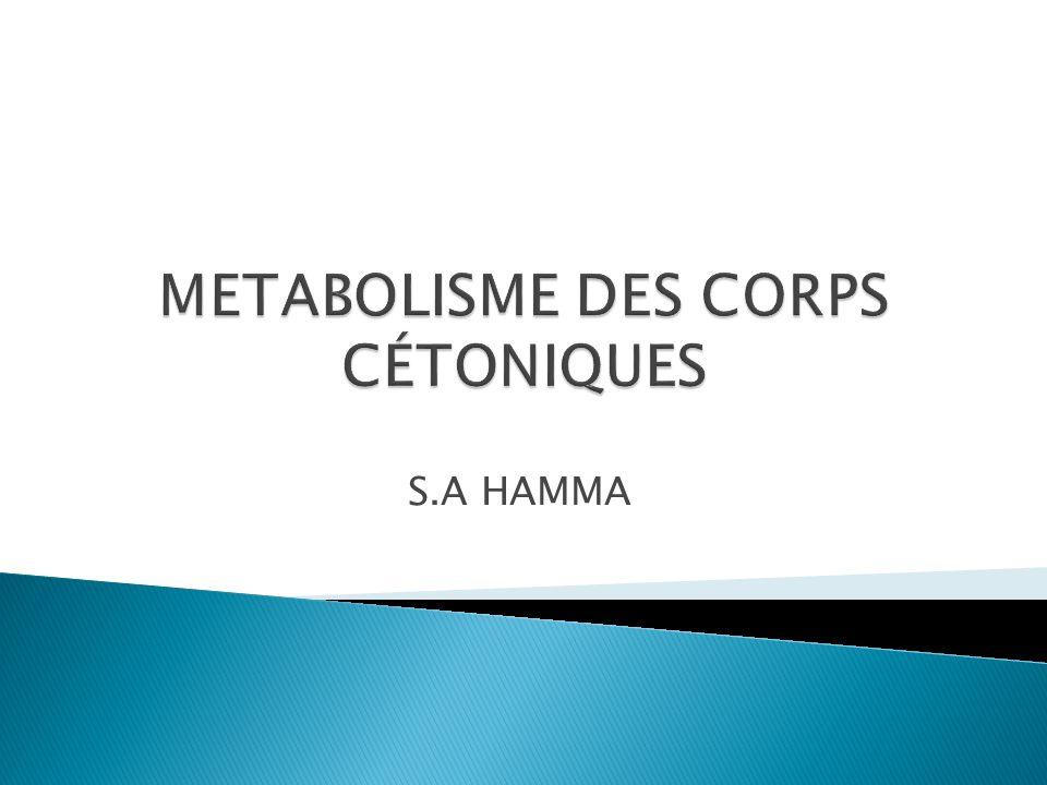 METABOLISME DES CORPS CÉTONIQUES