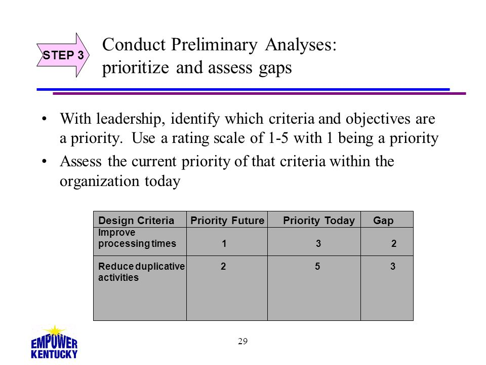 Conduct Preliminary Analyses: prioritize and assess gaps