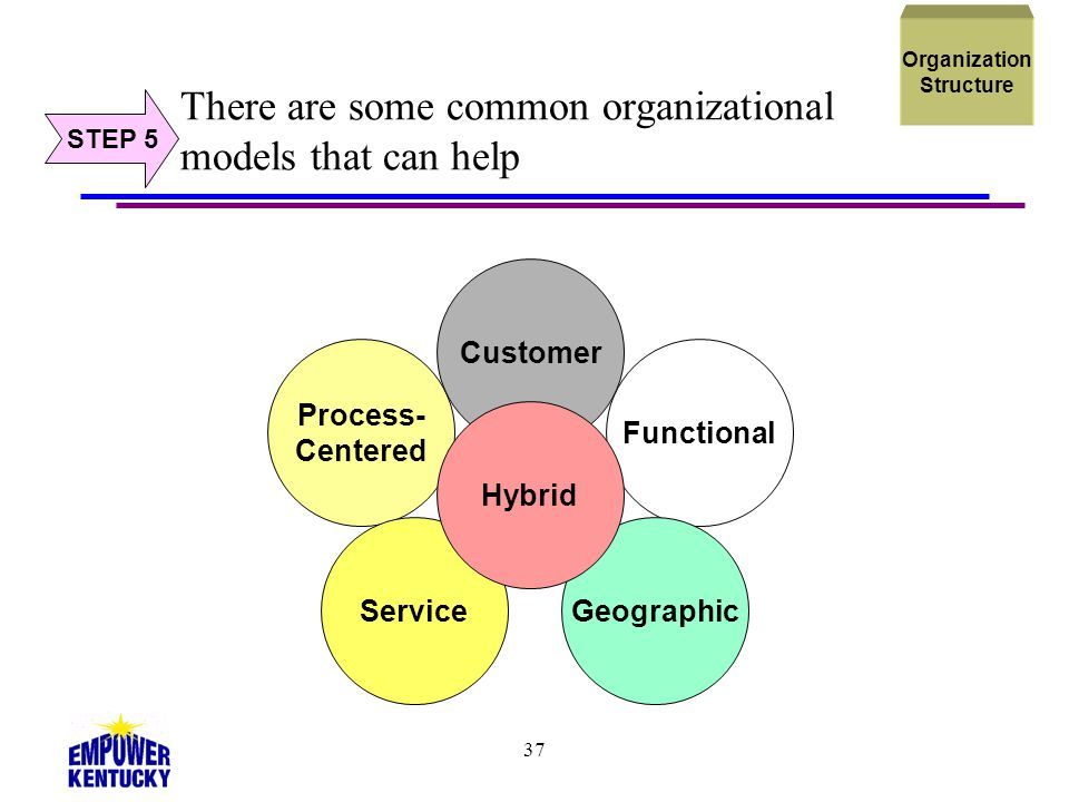 There are some common organizational models that can help