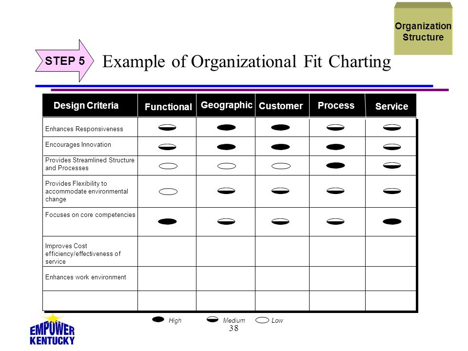 Example of Organizational Fit Charting