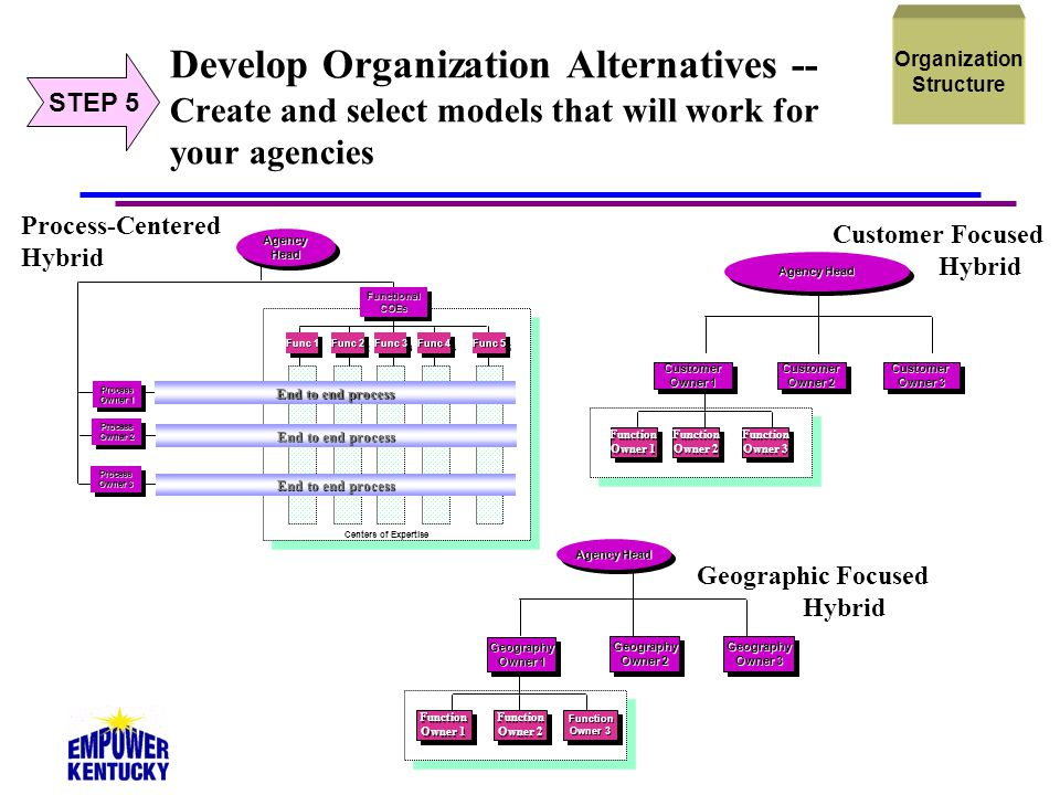 Organization Structure. STEP 5. Develop Organization Alternatives -- Create and select models that will work for your agencies.