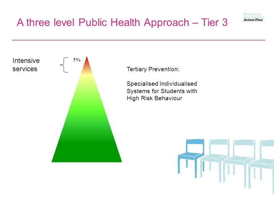 A three level Public Health Approach – Tier 3