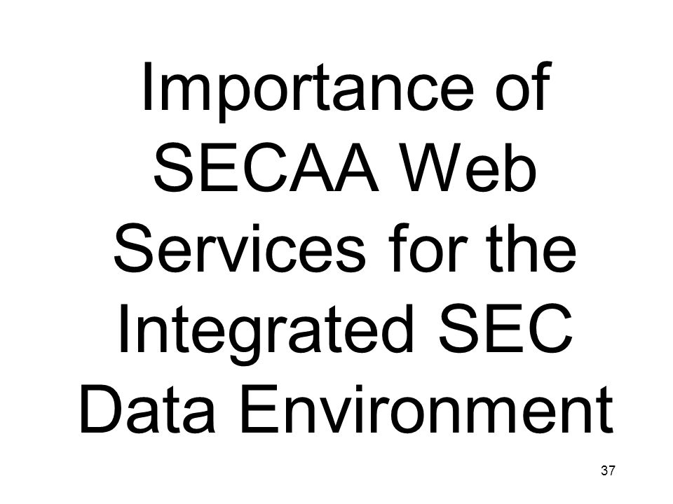 Importance of SECAA Web Services for the Integrated SEC Data Environment