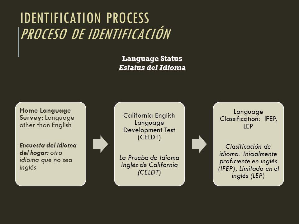 Identification process Proceso de identificación