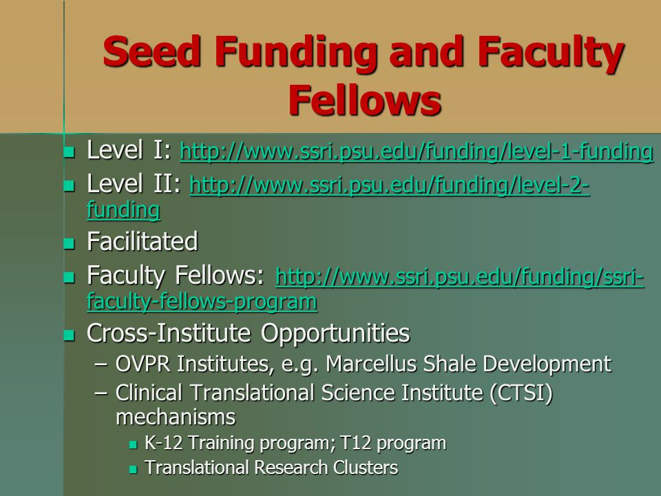 Seed Funding and Faculty Fellows