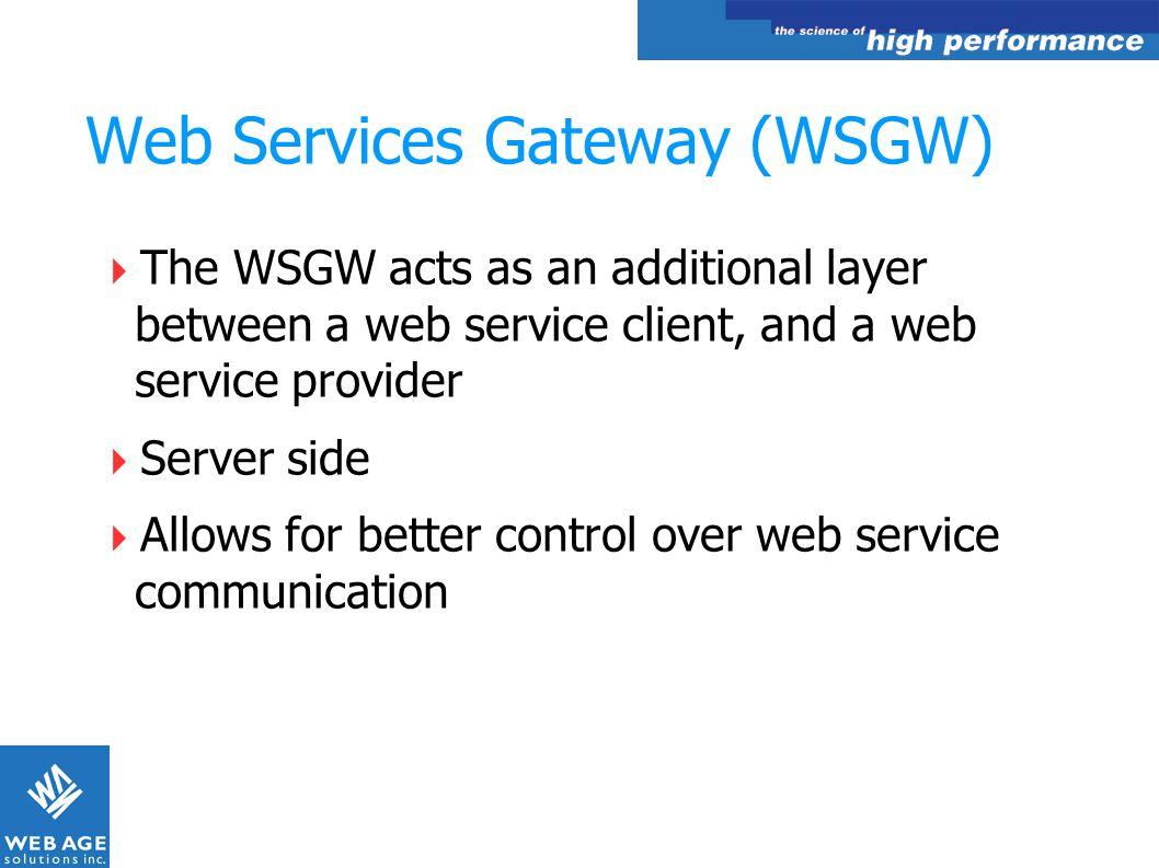 Web Services Gateway (WSGW)