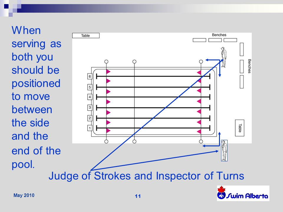 Judge of Strokes and Inspector of Turns