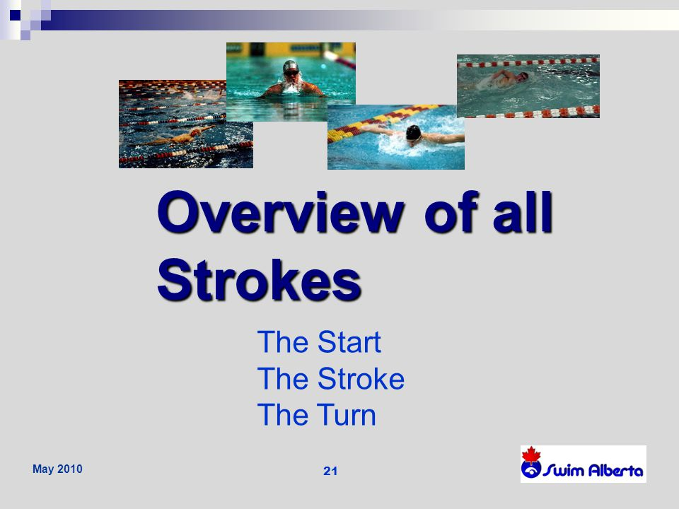 Overview of all Strokes