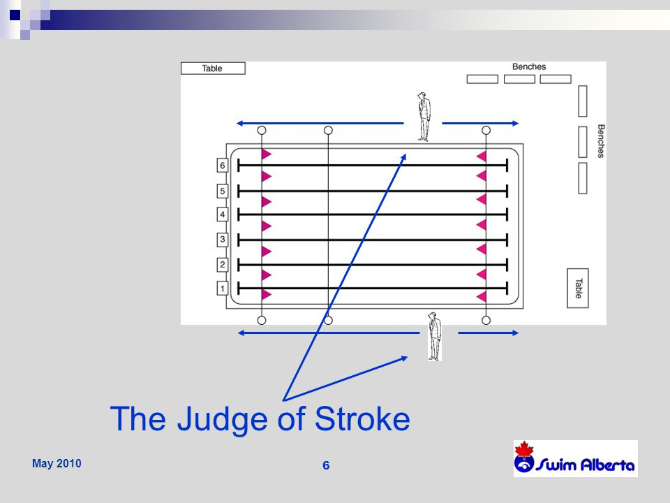 The Judge of Stroke May 2010