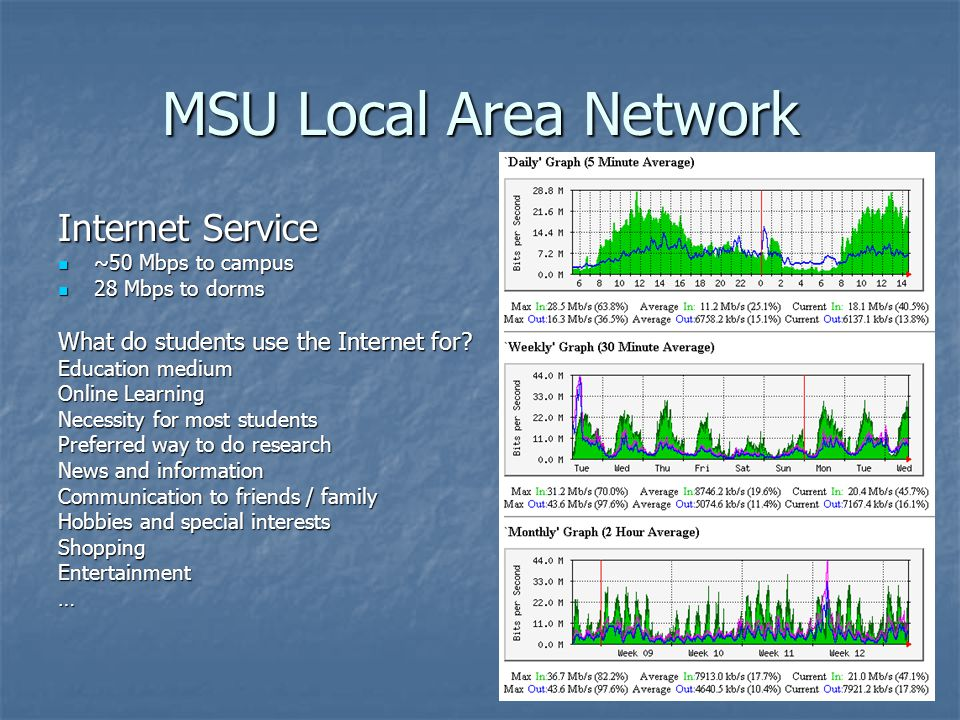 MSU Local Area Network Internet Service