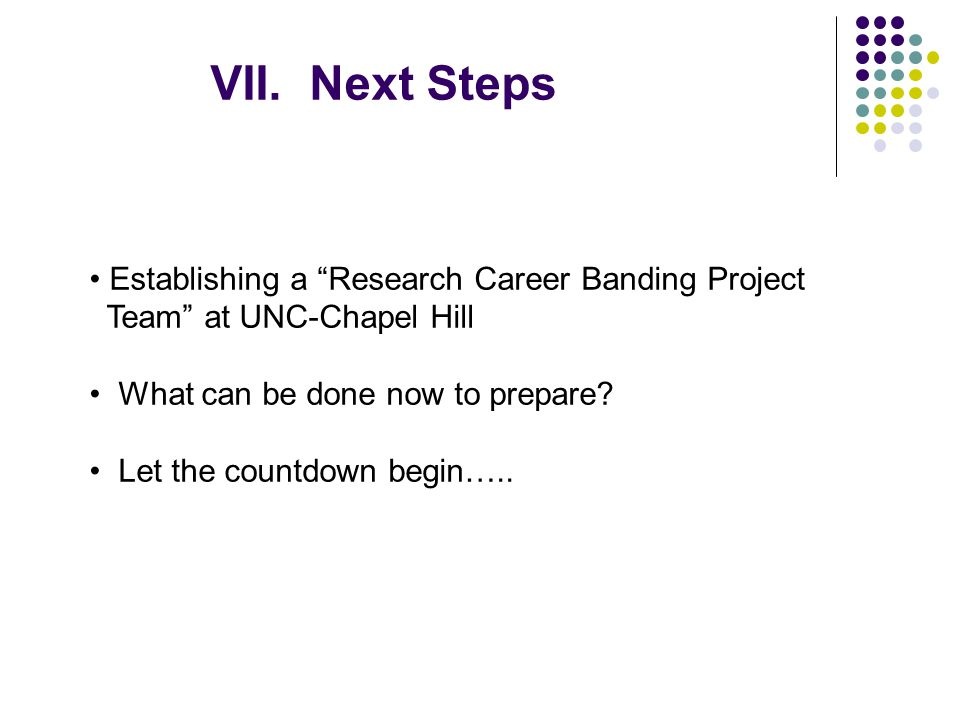 VII. Next Steps Establishing a Research Career Banding Project