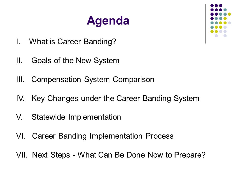 Agenda I. What is Career Banding II. Goals of the New System