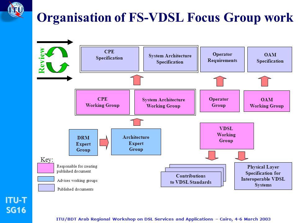 Organisation of FS-VDSL Focus Group work