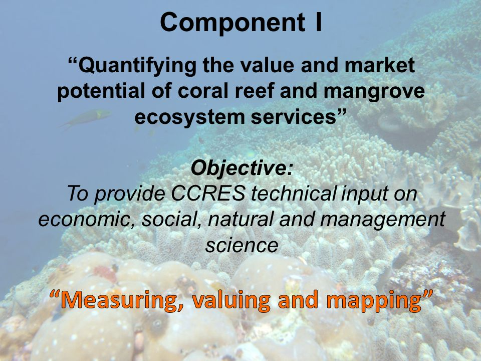 Component I Quantifying the value and market potential of coral reef and mangrove ecosystem services Objective: To provide CCRES technical input on economic, social, natural and management science Measuring, valuing and mapping